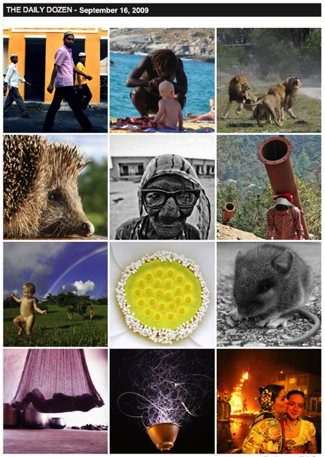 National Geographic Daily Dozen
